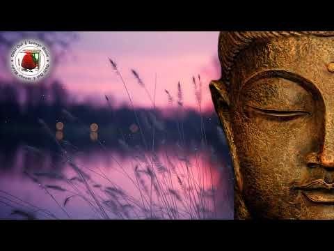 Best Of Buddha Luxury Bar 2018 Youtube With Images Luxury