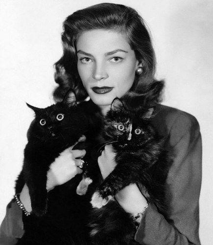 Lauren Baccall avec deux de ses chats