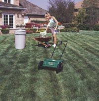 Fertilizing schedule for lawn