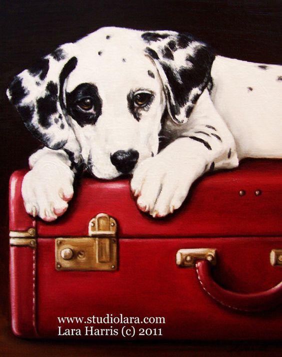 Dalmation: Vintage Suitcases, Pet Portraits, Dalmatian Puppies, Dalmatian Dogs, Dalmation Puppy, Dog Paintings, Dog S