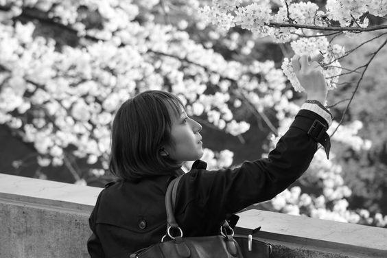 花が花を撮っている