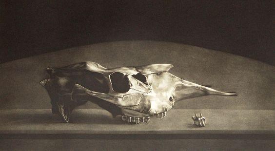 Erling Valtyrson - Elgskalle - mezzotint: 1997 Mezzotint, Mezzotint Masters, Prints Mezzotint, Media Graphics, Graphics Prints, Skull 1997, Moose Skull, Printmaking Paper, Original Prints