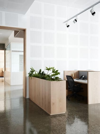 Either you want a small office cubicle plant or a big plant for your office, there must be enough office plants for you to pick from in our gallery. For other ideas go to betterthathome.com