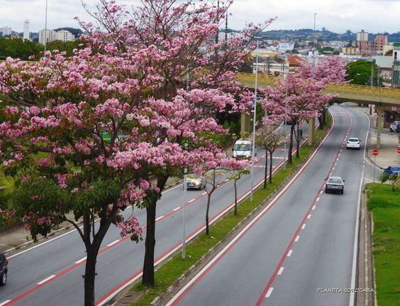 Sorocaba, Brasil