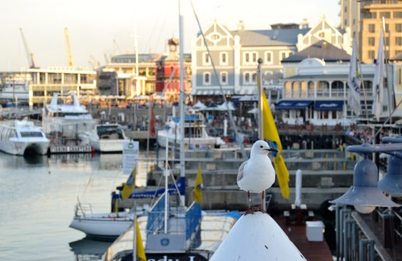 V&A Waterfront...