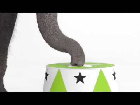 ▶ Get Crackin' with an elephant | Wonderful Pistachios