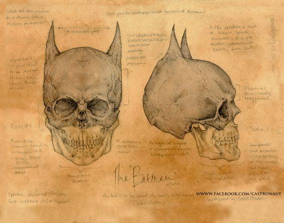 THE BATMAN 11x14 signed and numbered lustre print - Da Vinci Anatomical Skull Study. $32.00, via Etsy.