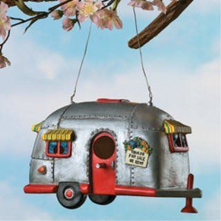 This combines my two most favorite things.. camping and birds. Love this!!