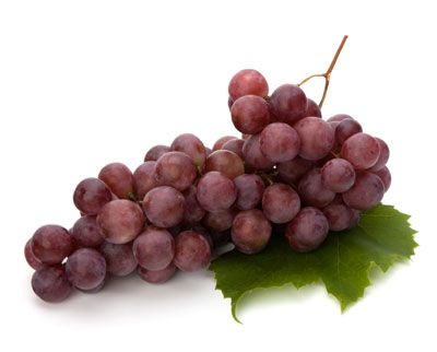 Ten Nutrients That Shrink: Calcium pyruvate (red apples, red grapes, red wine, and cheeses). methylhydroxy chalcone polymer (MHCP) in cinnamon makes. epigallocatechin gallate (EGCG), in green tea. Fucoxanthin (seaweed) Omega-3-rich foods.  Quercetin (onions, red grapes, tomatoes). Resveratrol (suppresses estrogen)-red grapes, red wine, peanuts, and dark chocolate. Vitamin C helps reduce stress hormone levels