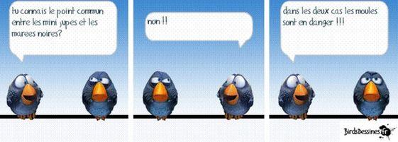 Chez dom - Humour