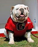 Auction Item: Photo with Russ the Bulldog - UGA vs. Florida Atlantic (9/15/2012)