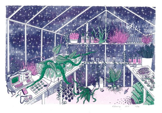 - Ashley Ronning - DEEP SPACE HOUSE PLANT -