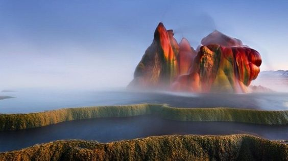 Fly geyser: The new water source actually formed a whole new mini-ecosystem, with tiny fish swimming in the furthest pools where the water is cooler, as well as many local birds.