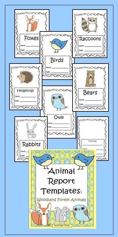 Woodland animals and Animals on Pinterest