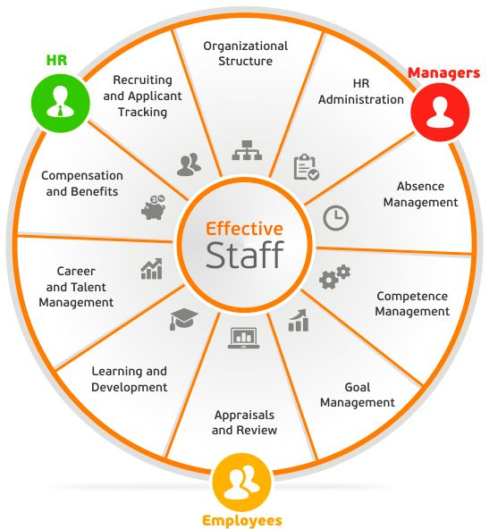 Lanteria Effectivestaff Is A Sharepoint Based Hr