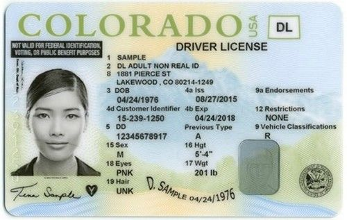 Pin By Anthony Ruatto On My Saves In 2021 Drivers License Doctors Note Template Doctors Note