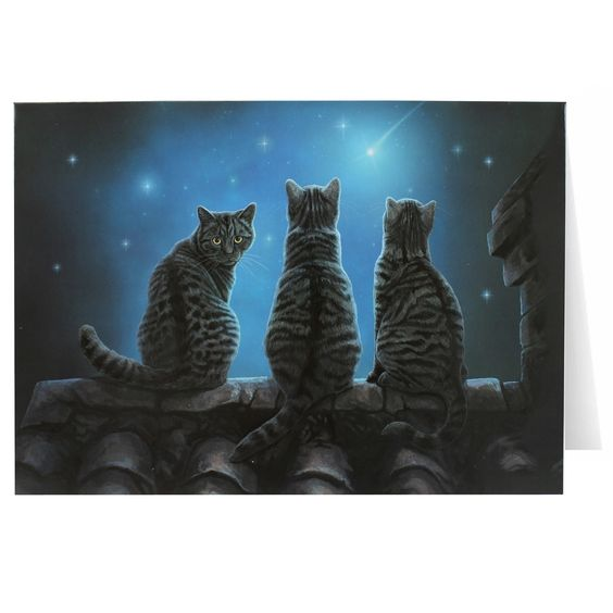 - Wish Upon a Star Greeting Card - Star Gazing Kitty Magickal Greeting Card. - Gray Tabby Cat Greeting Card - Blank Inside. - Beautiful Artwork by UK Artist Lisa Parker - printed in the United Kingdom