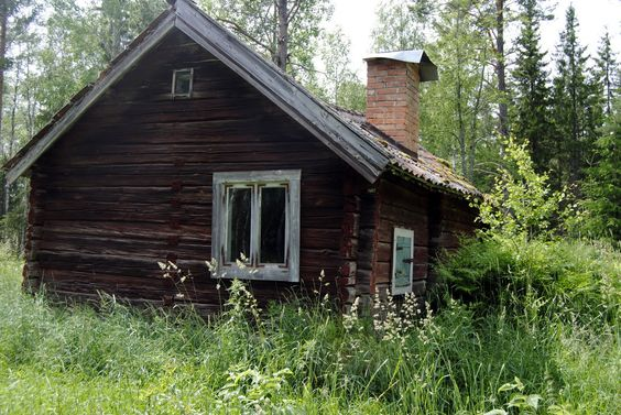 In the woods of Sweden.