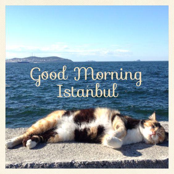 ¡Buen día Estambul!