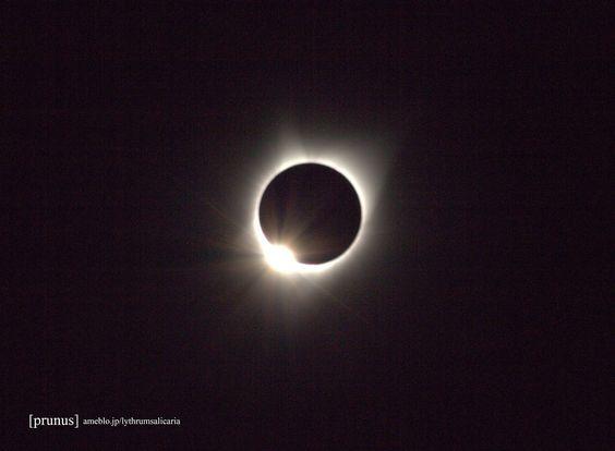 「2017-08-21 皆既日食」の写真 - Google フォト