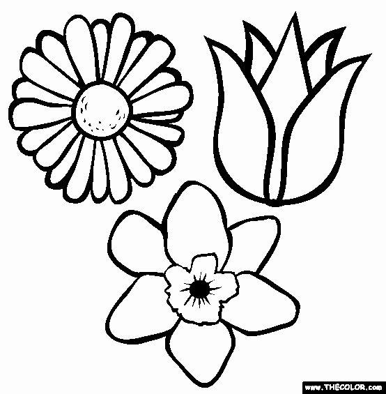 Single Flower Coloring Pages Elegant Free Line Coloring Pages Thecolor Spring Coloring Pages Cute Coloring Pages Flower Coloring Pages