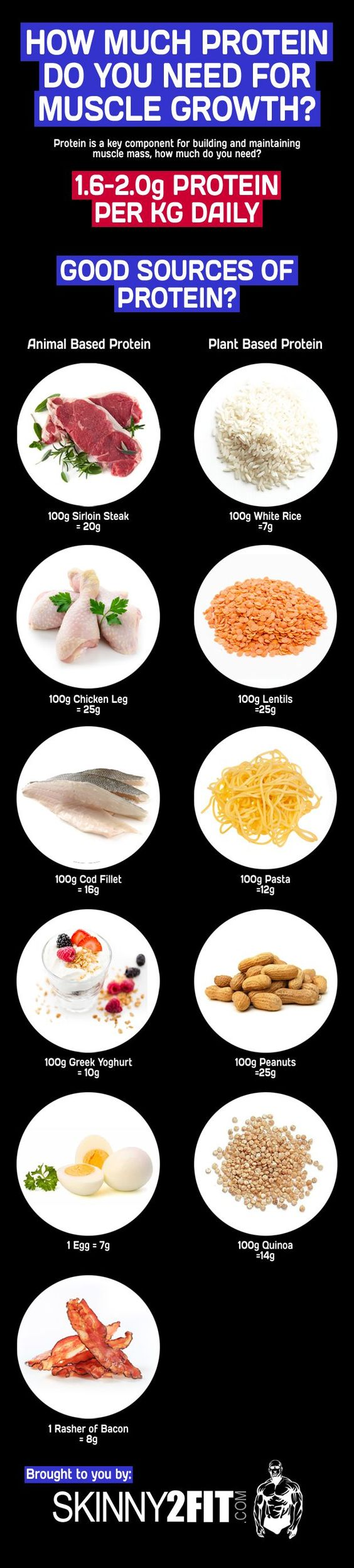 protein for muscle growth