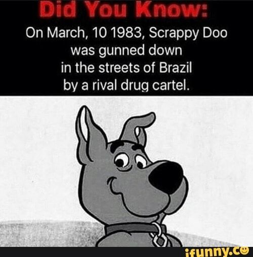 On March 101983 Scrappy Doo Was Gunned Down In The Streets Of Brazil By A Rival Drug Cartel Ifunny Scrappy Doo Memes Funny Memes