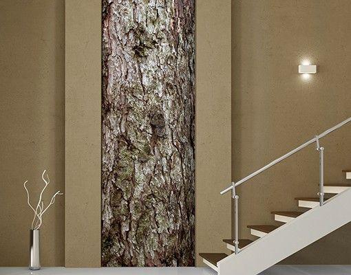 Selbstklebende Tapete - Fototapete Wald# No.YK17 #Baumrinde #Holz #Tapete #Natur #Natürlichkeit #Wald #Baum