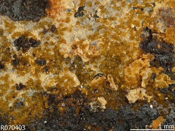 Corkite. Waldschacht mine (shaft 26), Neustädtel, Schneeberg District, Erzgebirge, Saxony, Germany Source: Michael Scott S101909