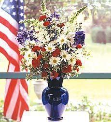Patriotic  Beauty