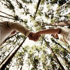 Photo taken from below facing up into tall trees. Couple holds hands as they look at each other.