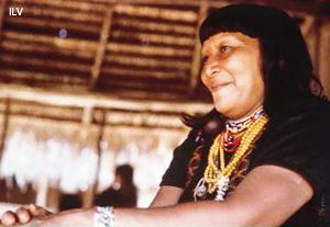 Indígenas yaminahuas