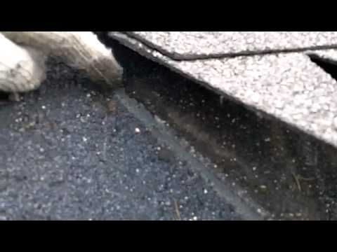 Roof Valley Leaking Roof Leak Repair Leaking Roof Flat Roof Repair