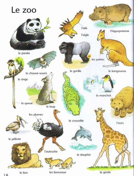 Resultado de imagen para vocabulaire animaux du zoo