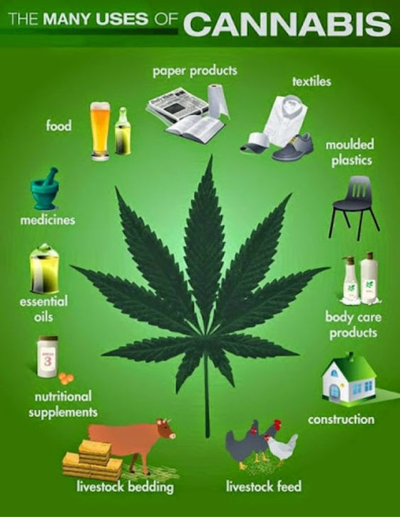 The many uses of hemp... and the food and products it provides.