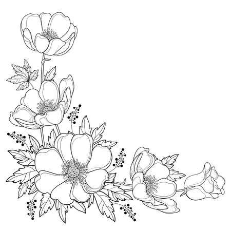 Hand Drawing Corner Bouquet With Outline Anemone Flower Or Windflower Flower Drawing Design Flower Art Drawing Flower Drawing