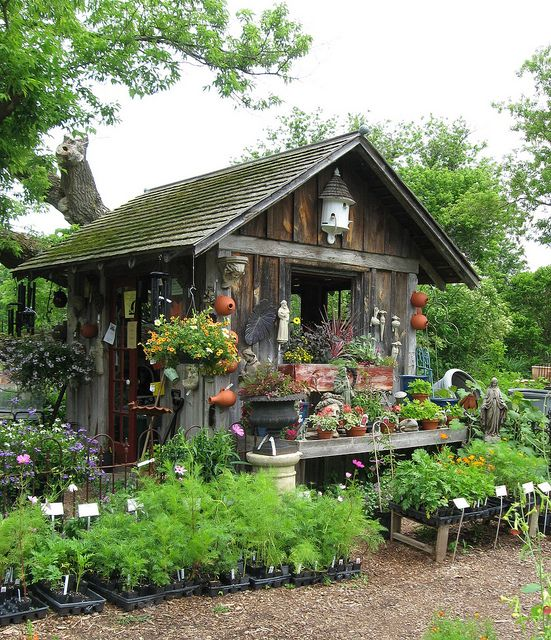 """I love this! My """"green house"""" is no longer used as a """"green house""""  I have tools and gardening supplies and misc stuff stored there...may try to gather old barn wood and go for this look."""