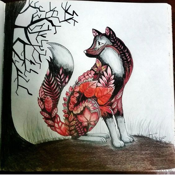Fox From Enchanted Forest Colouring Book Johannabasford