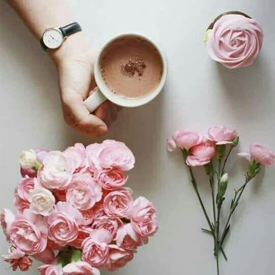 للعقول الراقيه صدم شاب امرأة عجوز بدراجته وبدل أن يعتذر لها ويساعدها على النهوض أخذ يضحك عليها ثم استأنف سيره Floral Floral Rings Floral Wreath