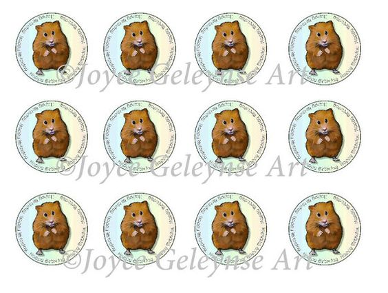Printable Hamster Cupcake Toppers Two Inch by FreshAirPrintables