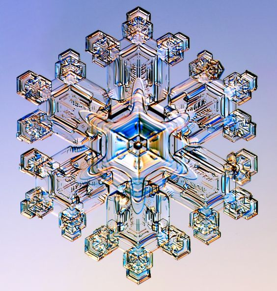 Prismatic snowflake photo taken with a photomicroscope by Kenneth G. Libbrecht. From SnowCrystals.com: