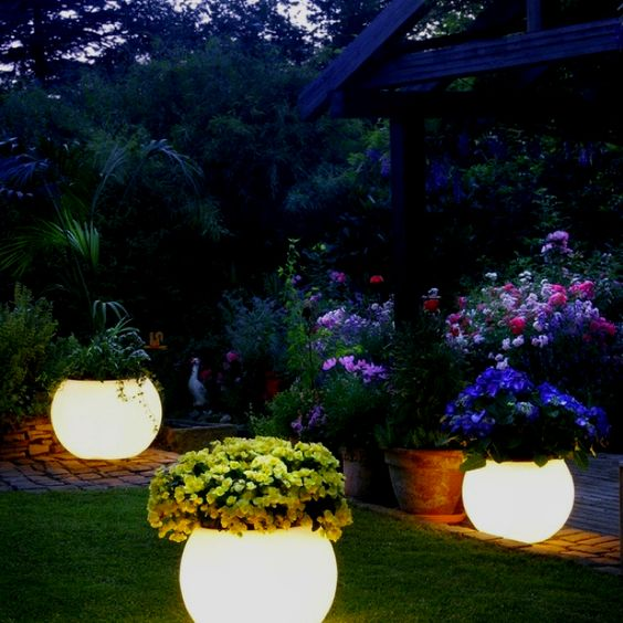 flower glow and landscapes on pinterest
