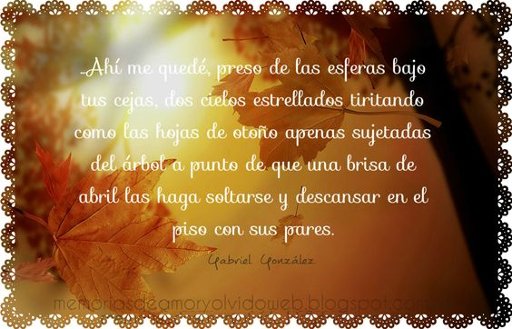 Fragmento de ´´Vuelo de abril´´  Autor: Gabriel González  Blog Memorias de Amor y Olvido  memoriasdeamoryolvidoweb.blogspot.com.ar/