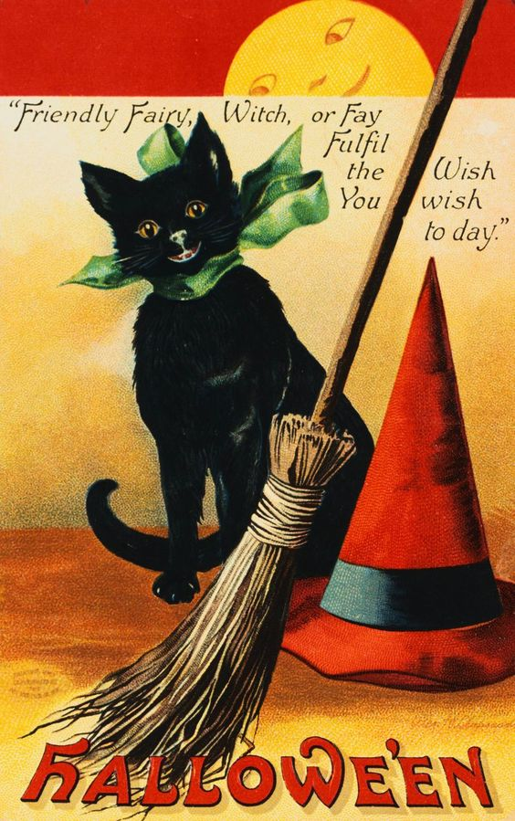 http://lizacats.ru/data/images/wysiwyg/all/AACH001128.JPG