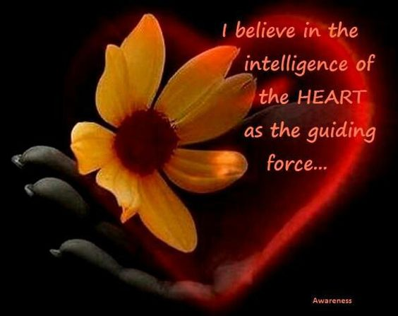 I believe in the intelligence of the heart as the guiding force...