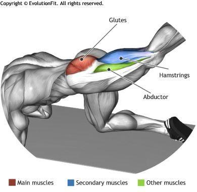GLUTES -  GLUTE KICKBACK STRAIGHT LEG