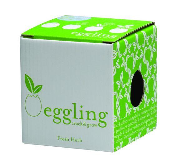 """Pfanzen wachsen aus Eiern? Logo - aufschlagen, gießen und schon bald wird es sprießen! """"Ei"""" - Pflanzbehälter aus Keramik mit Substrat und Samen."""
