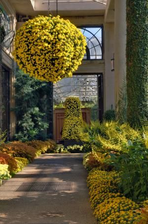 """i want to make flower """"balls"""" like this to hang on my porch instead of plain hanging baskets!!"""