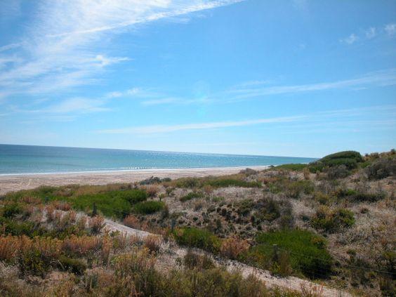 Moana  Photo taken by Professionals Christies Beach www.christiesbeachprofessionals.com.au #SouthAustralia #realestatesouthaustralia #Beach #Adelaide