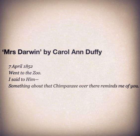 mrs aesop carol ann duffy So far in my reading of carol ann duffy's the world's wife, i've been noticing themes regarding two types of feminism, namely an extreme types of feminism (women better than men) and moderate (woman and men are equal) in some cases (in poems such as from mrs tiresias and pilate's wide), we .